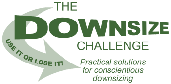 Downsize Challenge