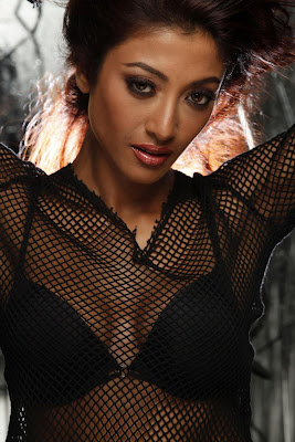 paoli dam & spicy glamour  images