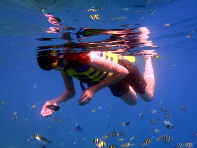 snorkeling liburan wisata ke pulau tidung