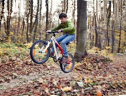 Ciclo das estações: Outono