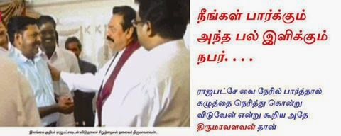 Is he/she a Tamil who vote for Viduthalai Chiruthaigal?