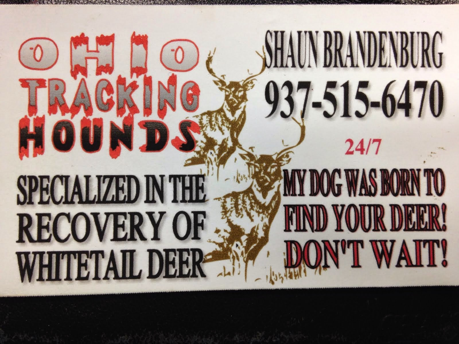 Ohio Blood deer tracking dogs
