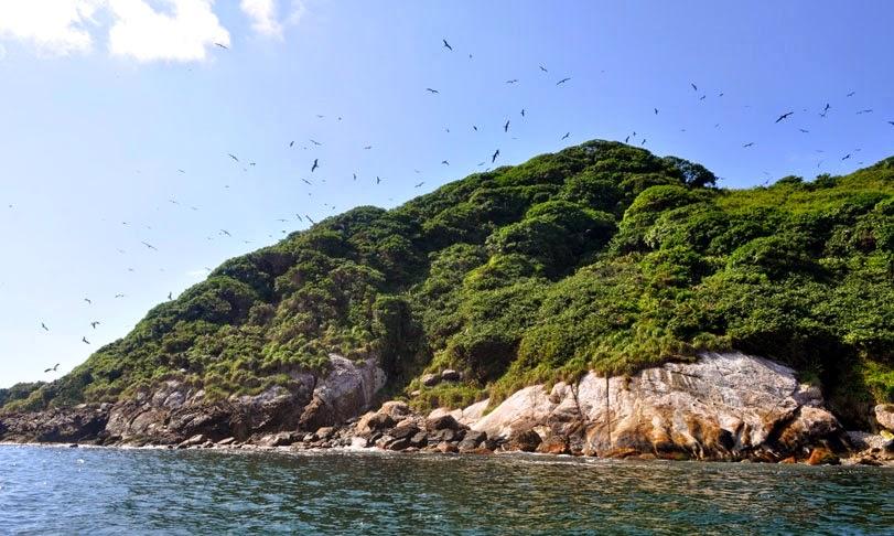 Ilha Guapirá, arquipélago de Currais, Parque Nacional Marinho das Ilhas dos Currais. Foto: Juliano Dobis