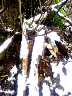 Geocache in the snow