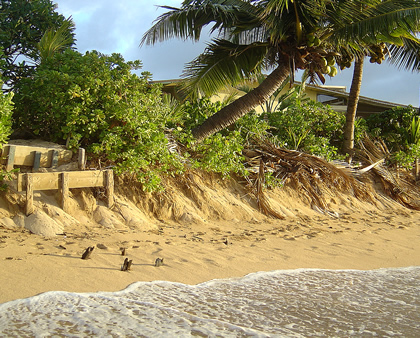 Beach Erosion Repair Contractors