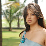 Lakshmi Rai from Kanchana  Photo Set