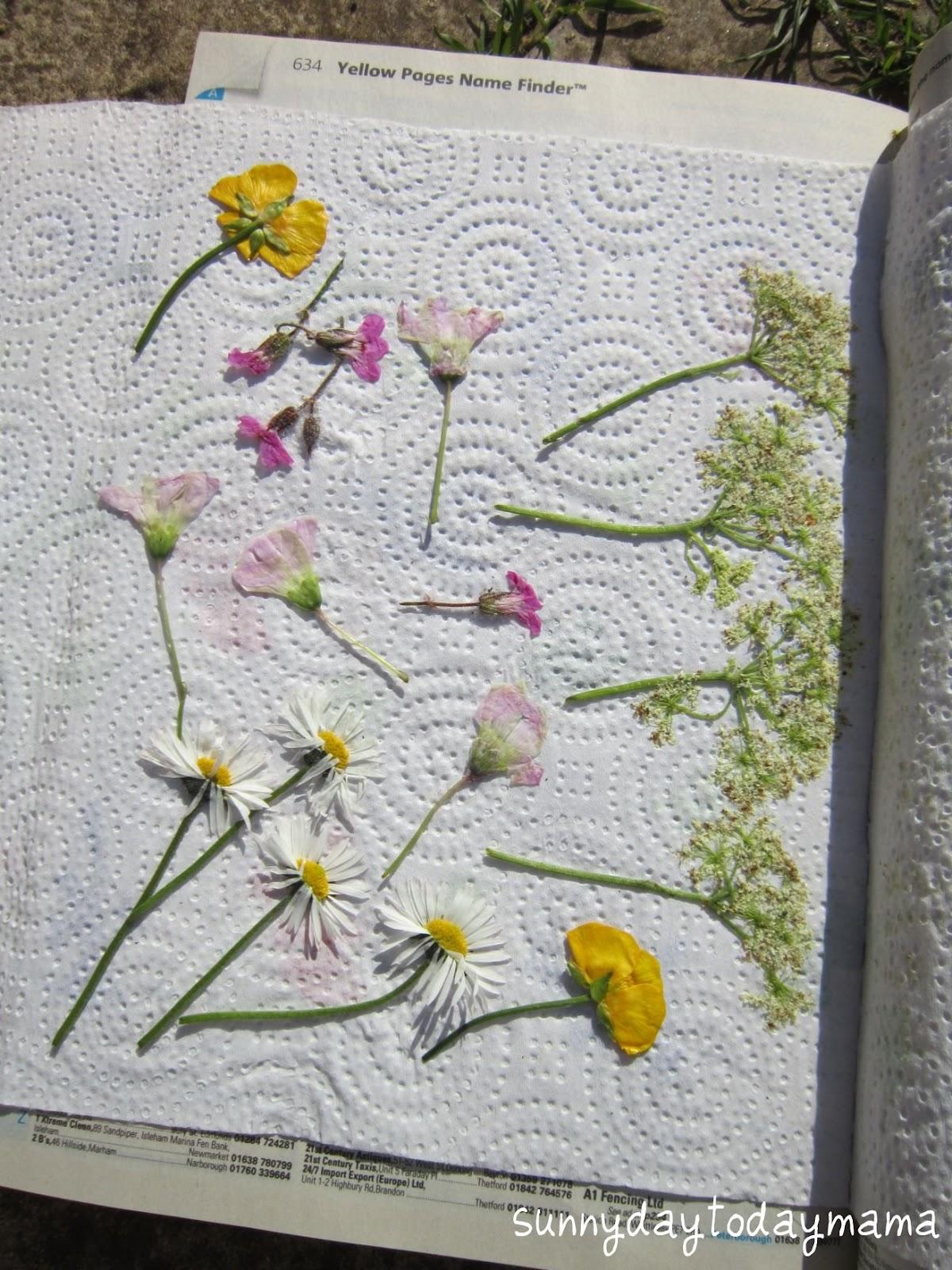 sunnydaytodaymama Homemade pressed flower keyrings