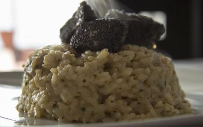 risotto con crema di scampi e cubi di tonno al papavero