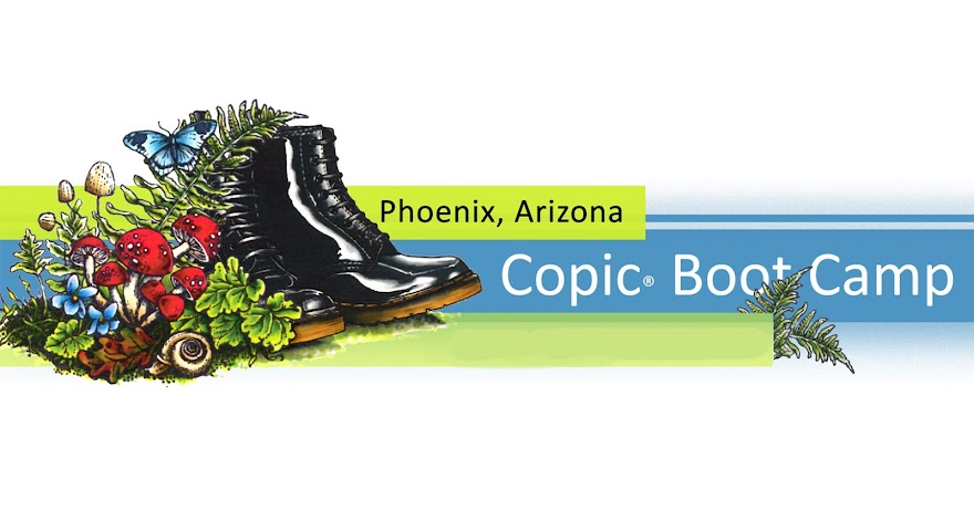 Copic® Boot Camp