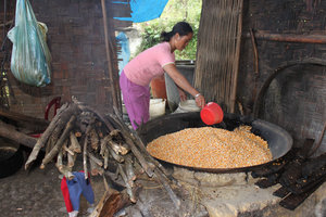 Making corn wine at a house of Pa Dí people (Mường Khương)