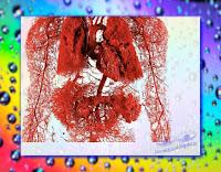 Ciało w powiększeniu - fraktal