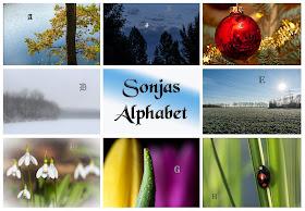 Sonjas Alphabet: Euer Buchstabe D