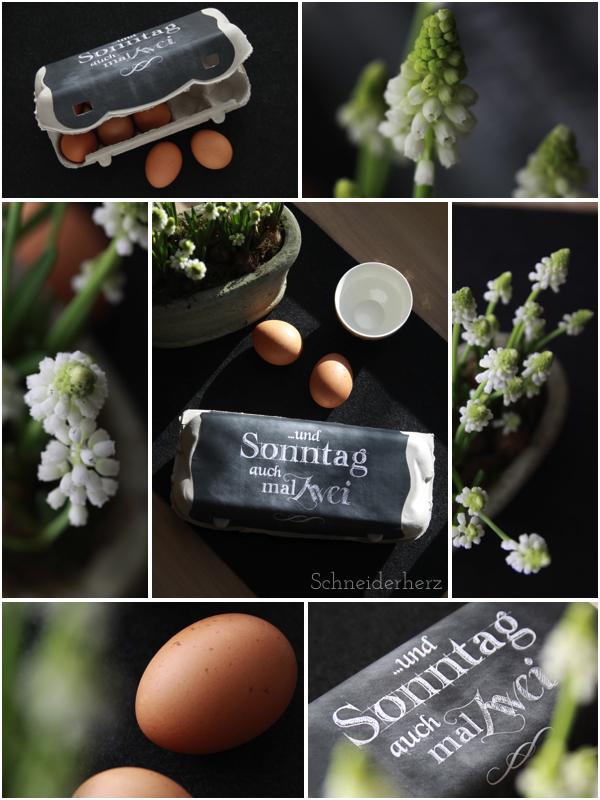 DIY Ostern Eierkarton Eierpappe Druckvorlage