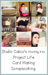 Studio Calico Monthly Kits - I subbed to the Project Life one