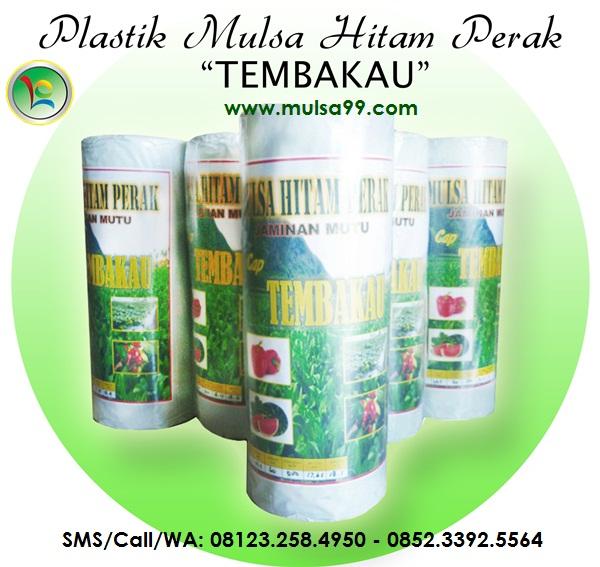 Mulsa Plastik