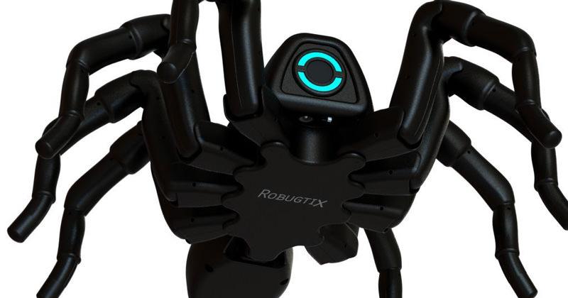 ロボットの蜘蛛が結構かわいい動きをする