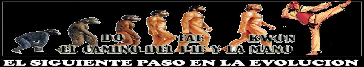 EL CAMINO DEL PIE Y LA MANO