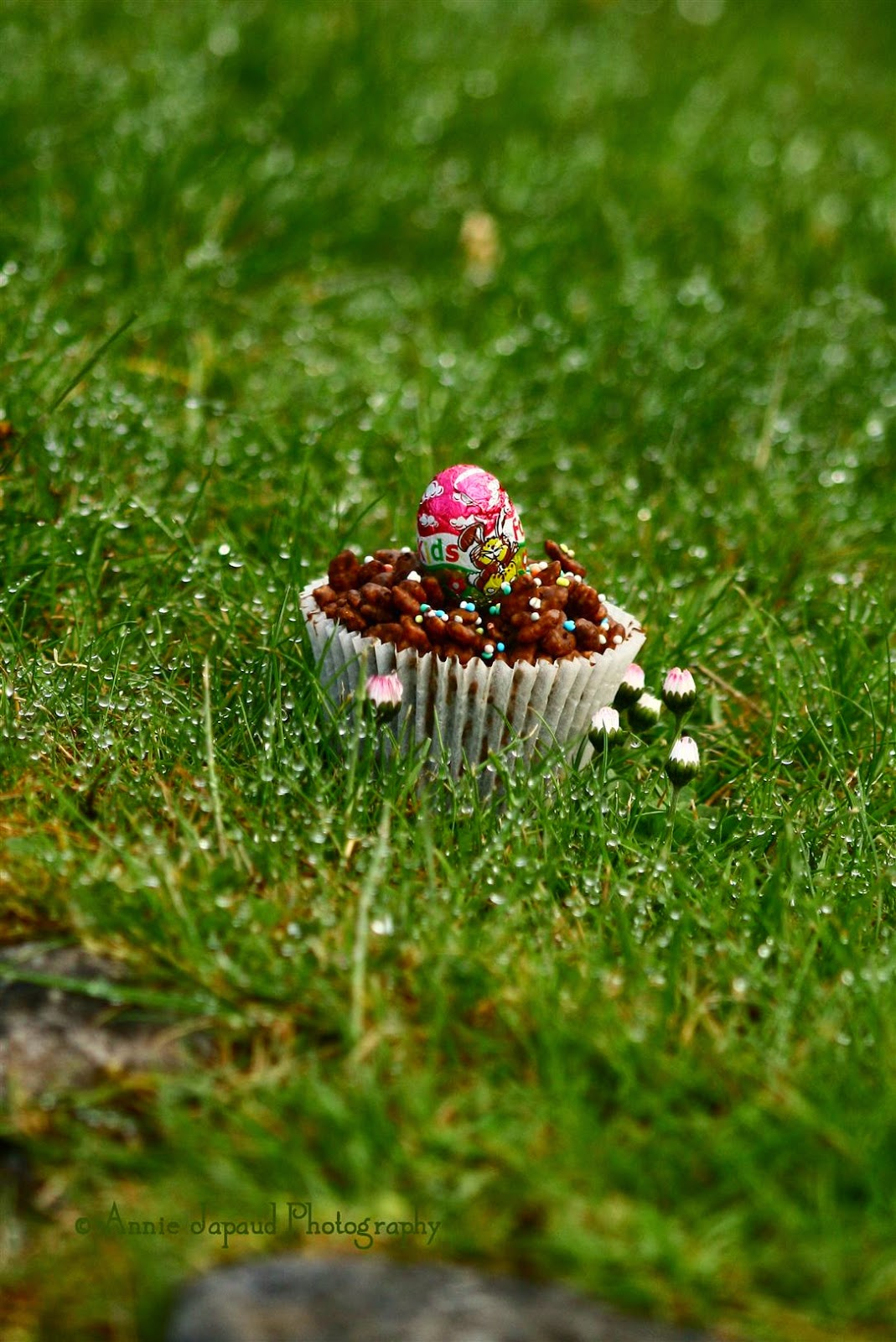 a Chocolate rice krispie cake in the grass