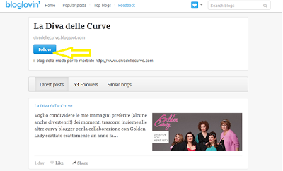 segui il blog su bloglovin'
