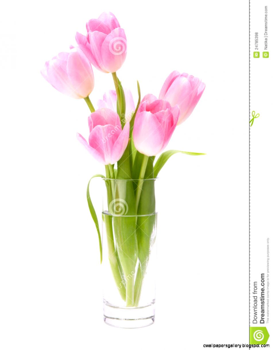 Pink Tulips Bouquet In Vase Royalty Free Stock Photos   Image