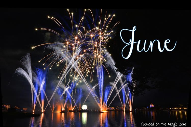 Focused on the Magic | Illuminations