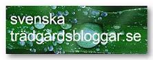 Svenske hageblogger