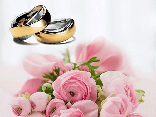alianzas y rosas