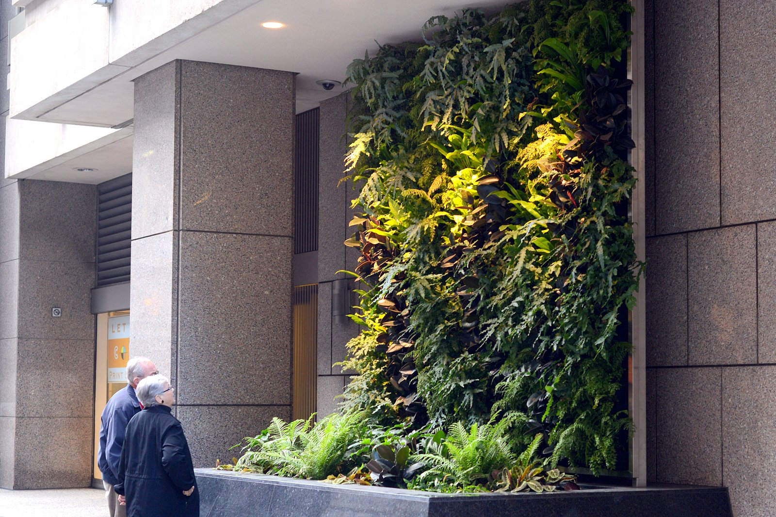 Plants on walls vertical garden systems 6 months mature for Wall garden system