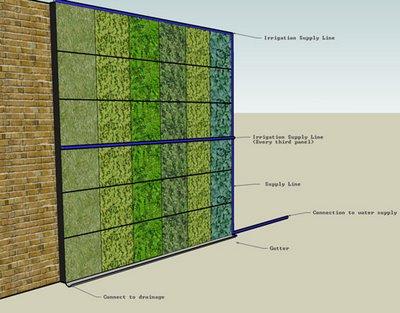 Muros verdes proyecto el bambu como nueva opci n para for Muro verde sistema constructivo