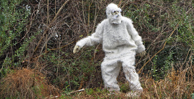 Image Result For Bigfoot Coloring Pages