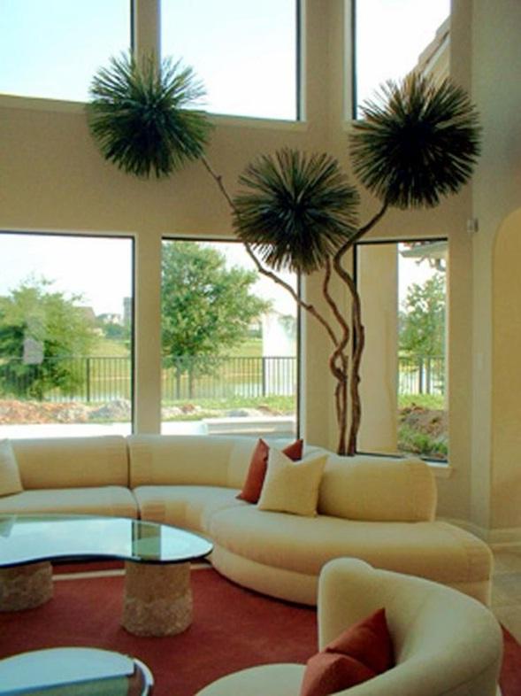 Decora y disena decoraci n de salas con plantas y jardineras - Jardineras para interiores ...