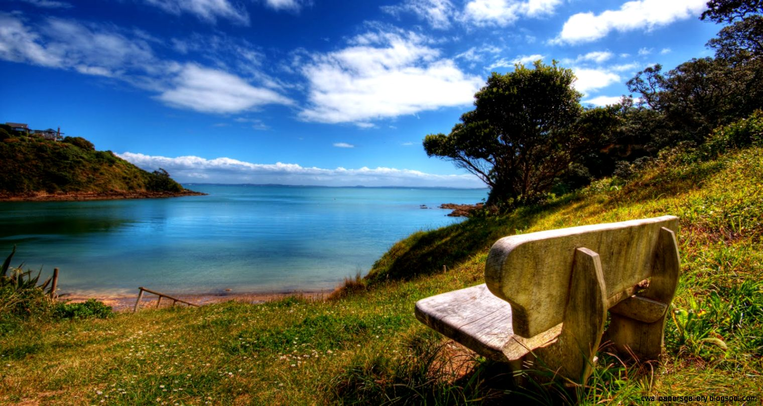 Beautiful Nature Sceneries