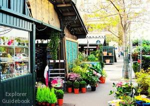 ile de la cite flower market