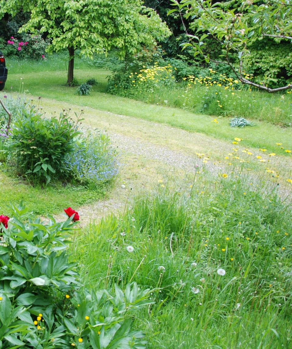 volmunster info le vinaigre blanc un herbicide cologique. Black Bedroom Furniture Sets. Home Design Ideas