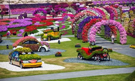 صور جميلة وساحرة لحديقة المعجزة