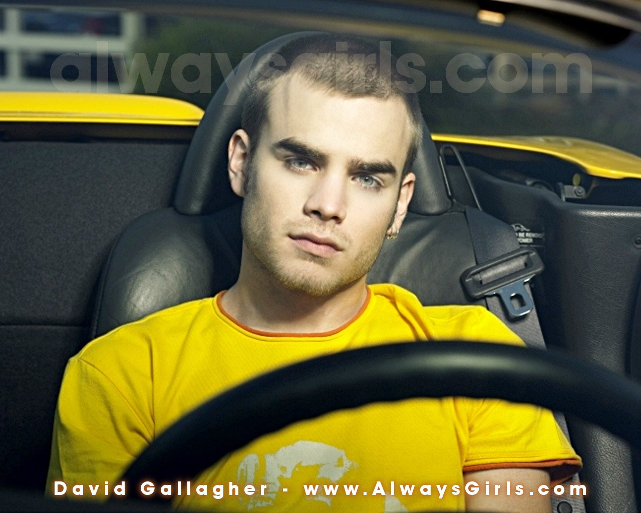 http://3.bp.blogspot.com/-v5i9w5S58BQ/TzKZOwVrHRI/AAAAAAAABBM/P5Ht7lZOsCo/s1600/david-gallagher-background-3-791320.jpg