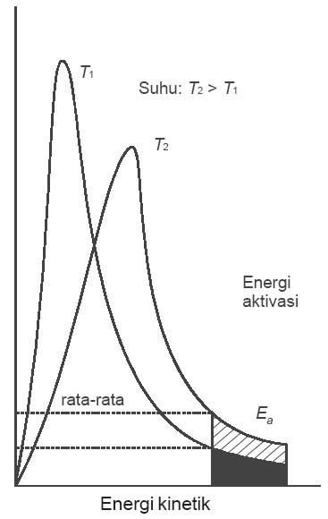 Teori tumbukan pada laju reaksi energi aktivasi kecepatan contoh distribusi energi molekul molekul gas ccuart Image collections