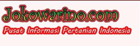 Jokowarino.com Tempat Berbagi Informasi Pertanian Indonesia