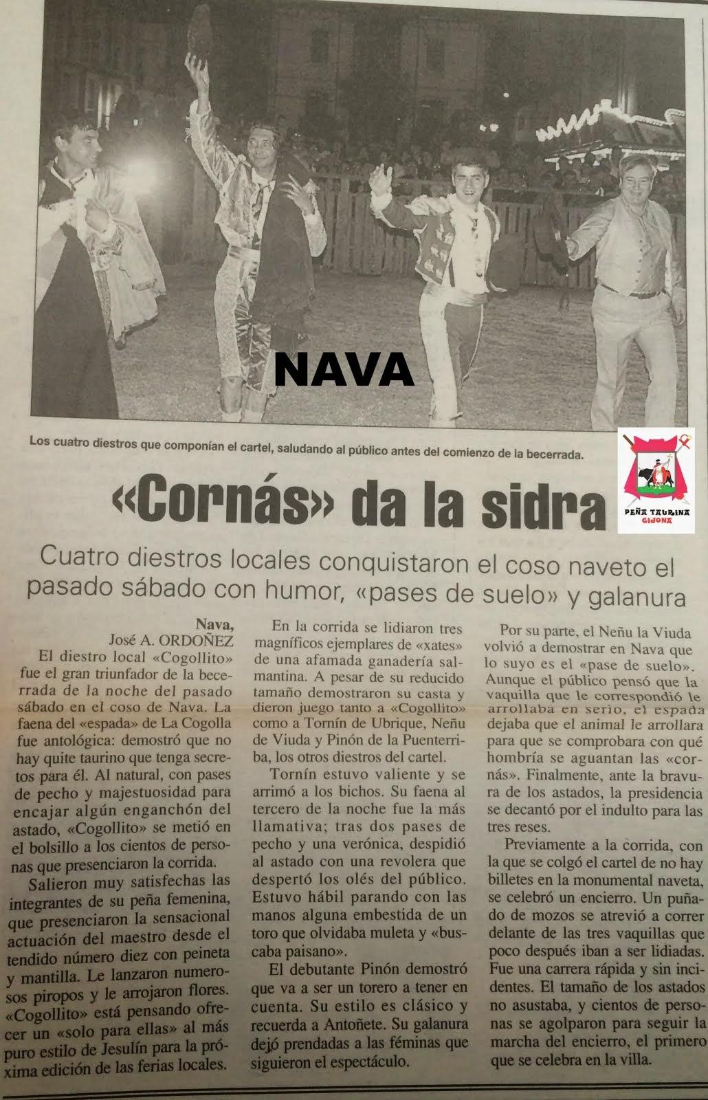 NAVA ASTURIAS TOROS