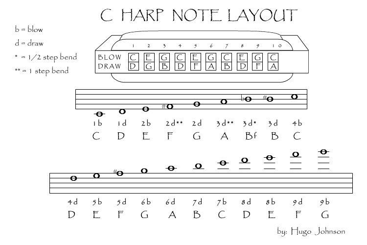 Third Bass Harmonicx - Tracker