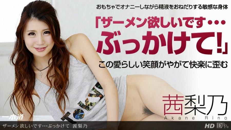 1Pondo-120313-707 - Drama Collection Akane Rino
