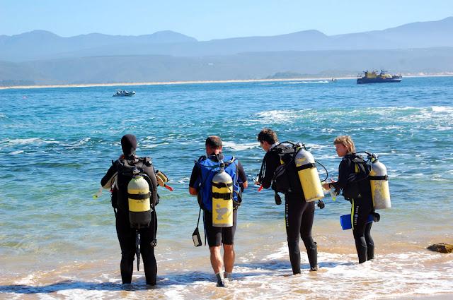 Scuba Diving Plettenberg Bay