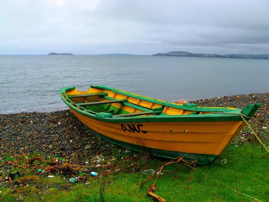 Que significa soñar con bote