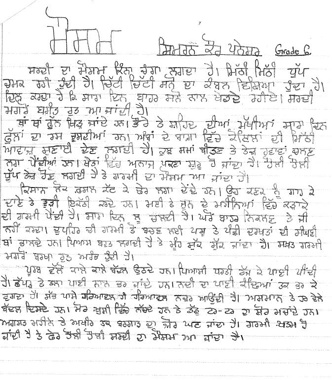 Essay On Radio In Punjabi Language Academic Writing Help