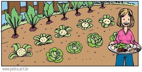 imagens de jardim horta e pomar:Que tal fazer uma hortinha orgânica?