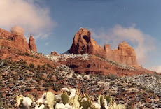 Sedona Winter