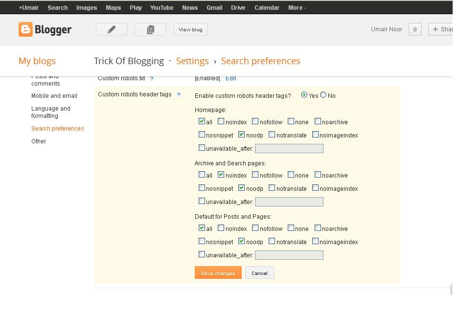 Use Language And Formatting | Search Preferences | Others Option Setting In Blogger Blogspot 3