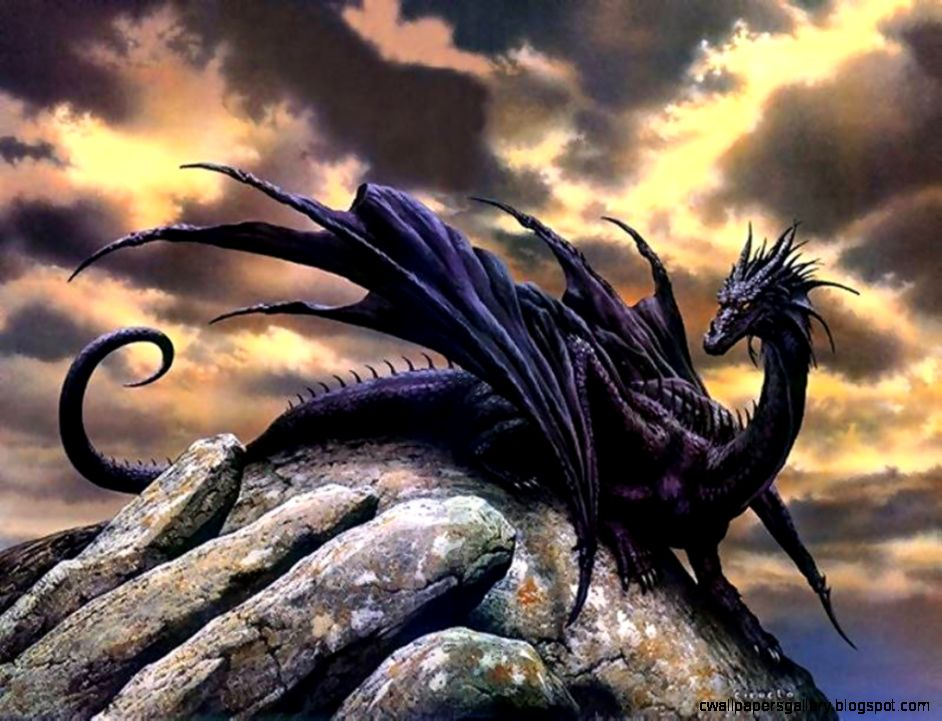 1604 Dragon HD Wallpapers  Backgrounds   Wallpaper Abyss