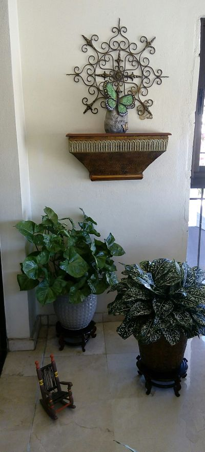 Naturaleza en tu balcón