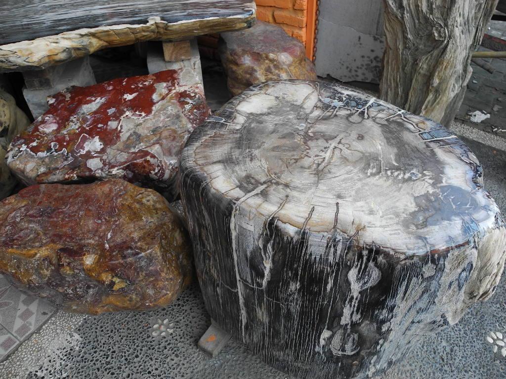 Petrified wood for sale versteinertes holz zu verkaufen for Petrified wood furniture for sale